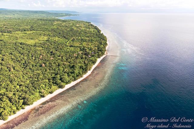 VISIT MOYO ISLAND: TOP 5 REASONS